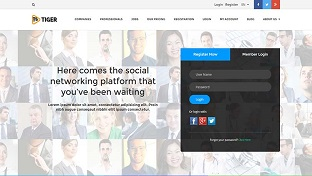 Social Networking Web development company india